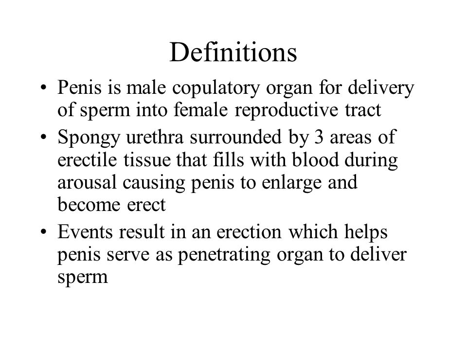 Definitions Penis is male copulatory organ for delivery of sperm into female reproductive tract.