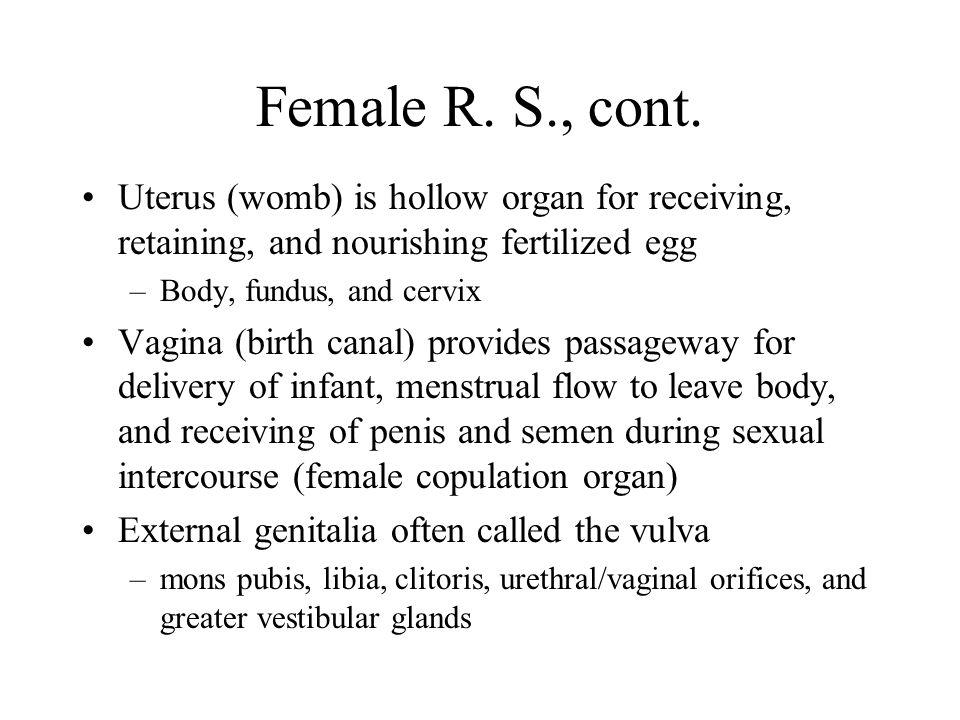 Female R. S., cont. Uterus (womb) is hollow organ for receiving, retaining, and nourishing fertilized egg.