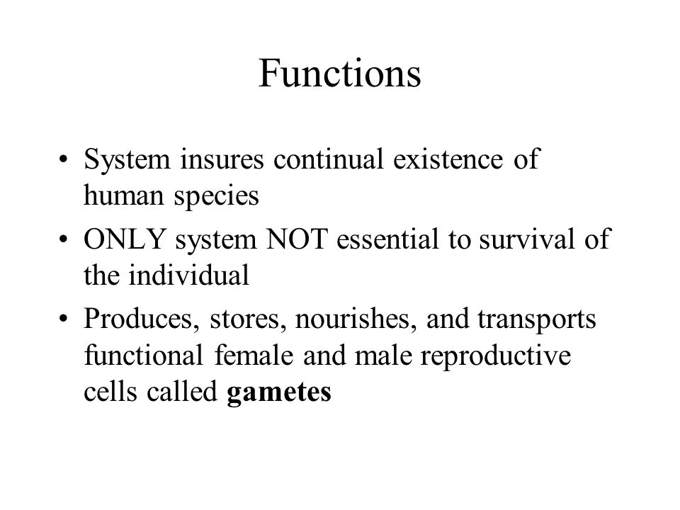 Functions System insures continual existence of human species