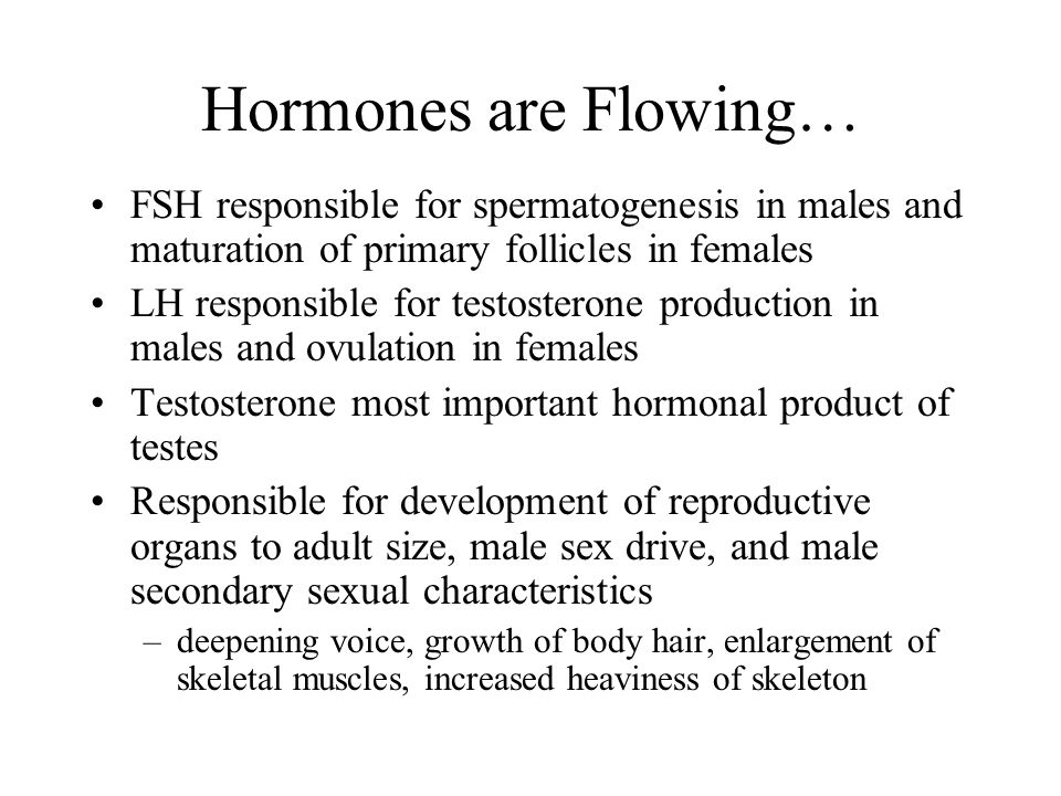 Hormones are Flowing… FSH responsible for spermatogenesis in males and maturation of primary follicles in females.