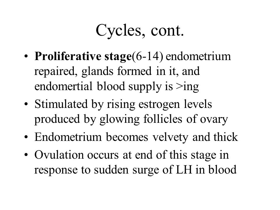 Cycles, cont. Proliferative stage(6-14) endometrium repaired, glands formed in it, and endomertial blood supply is >ing.