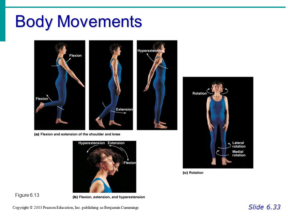 Body Movements Slide 6.33 Figure 6.13