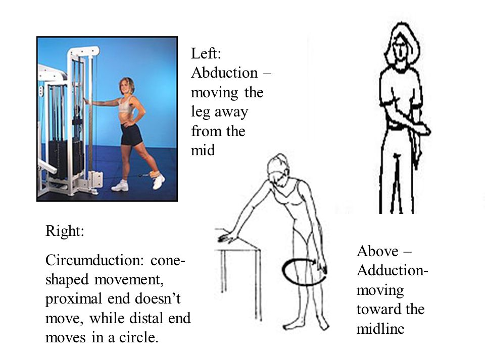 Left: Abduction – moving the leg away from the midline