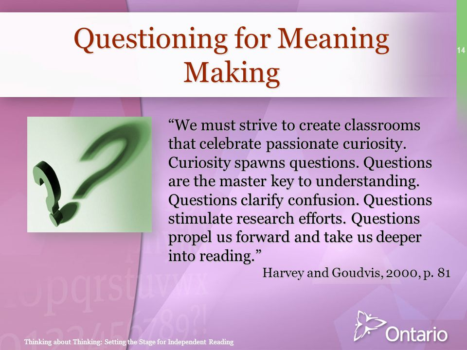 Questioning for Meaning Making