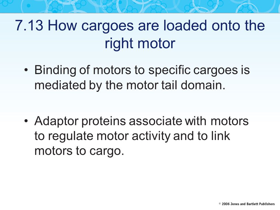 7.13 How cargoes are loaded onto the right motor
