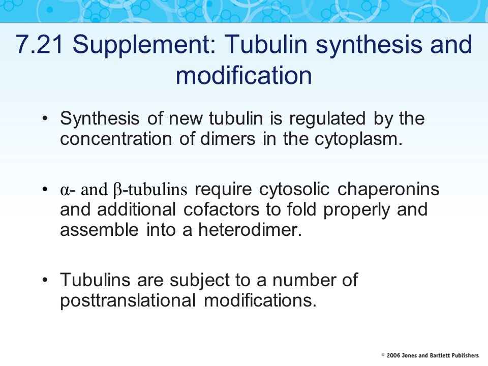 7.21 Supplement: Tubulin synthesis and modification