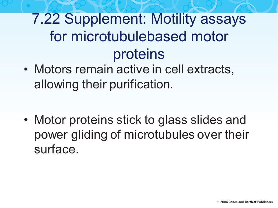 7.22 Supplement: Motility assays for microtubulebased motor proteins