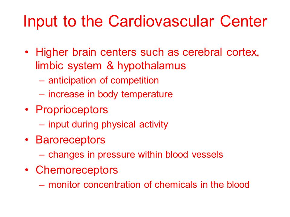 Input to the Cardiovascular Center