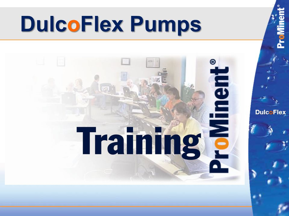 DulcoFlex Pumps