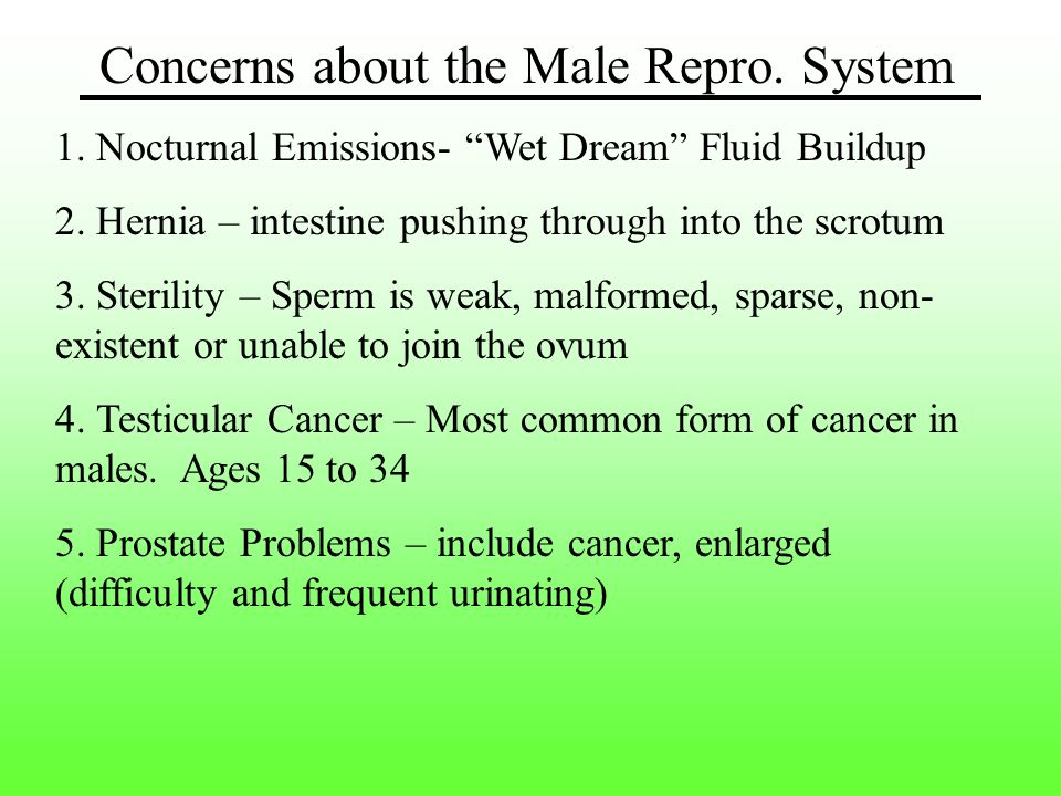 Concerns about the Male Repro. System