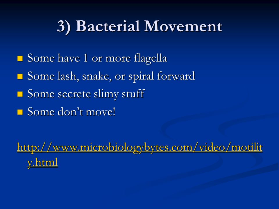 3) Bacterial Movement Some have 1 or more flagella