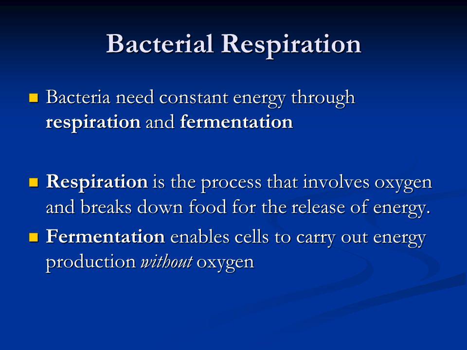 Bacterial Respiration
