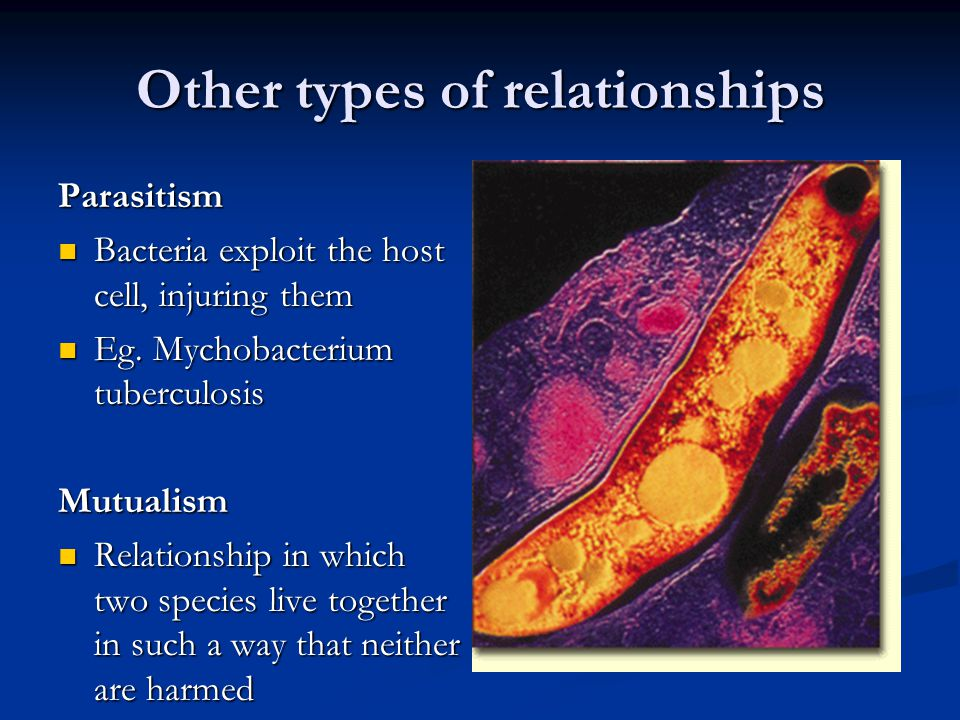 Other types of relationships