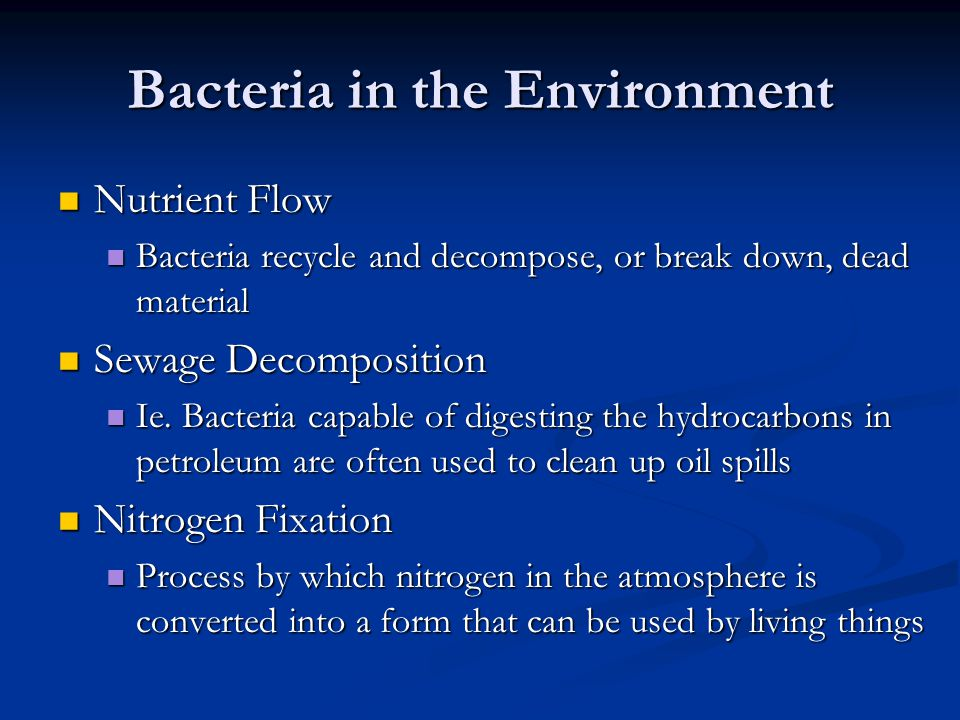 Bacteria in the Environment