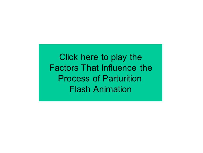 Factors That Influence the Process of Parturition Flash Animation