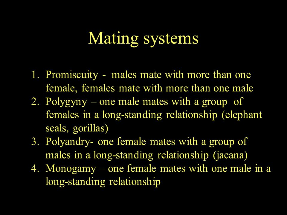 Mating systems Promiscuity - males mate with more than one female, females mate with more than one male.