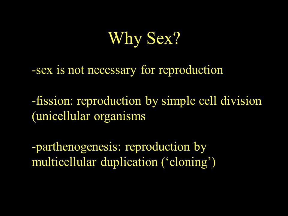Why Sex -sex is not necessary for reproduction