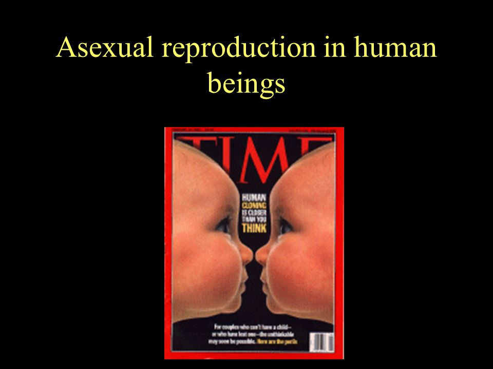 Asexual reproduction in human beings