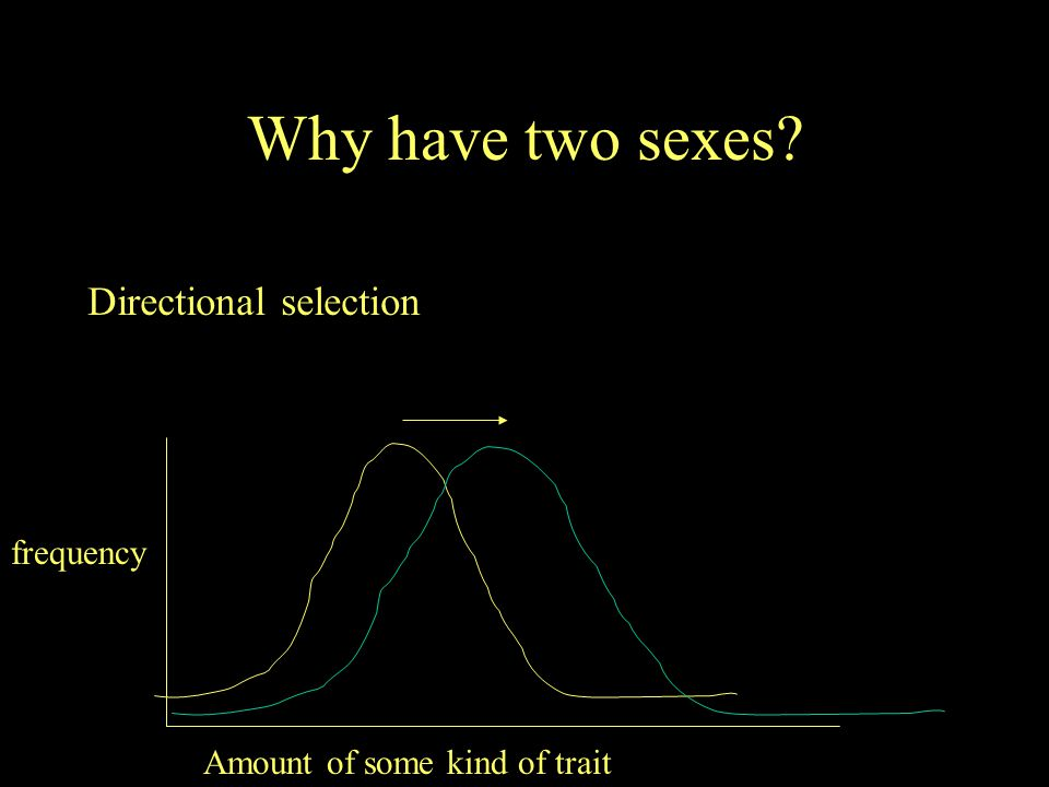 Why have two sexes Directional selection frequency