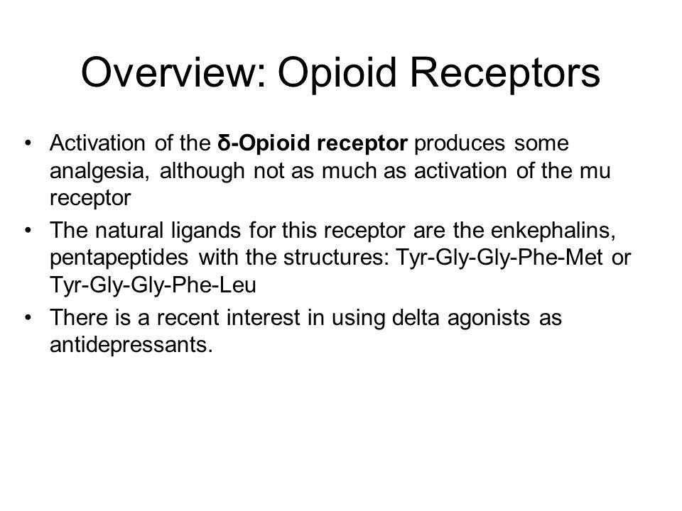 Overview: Opioid Receptors