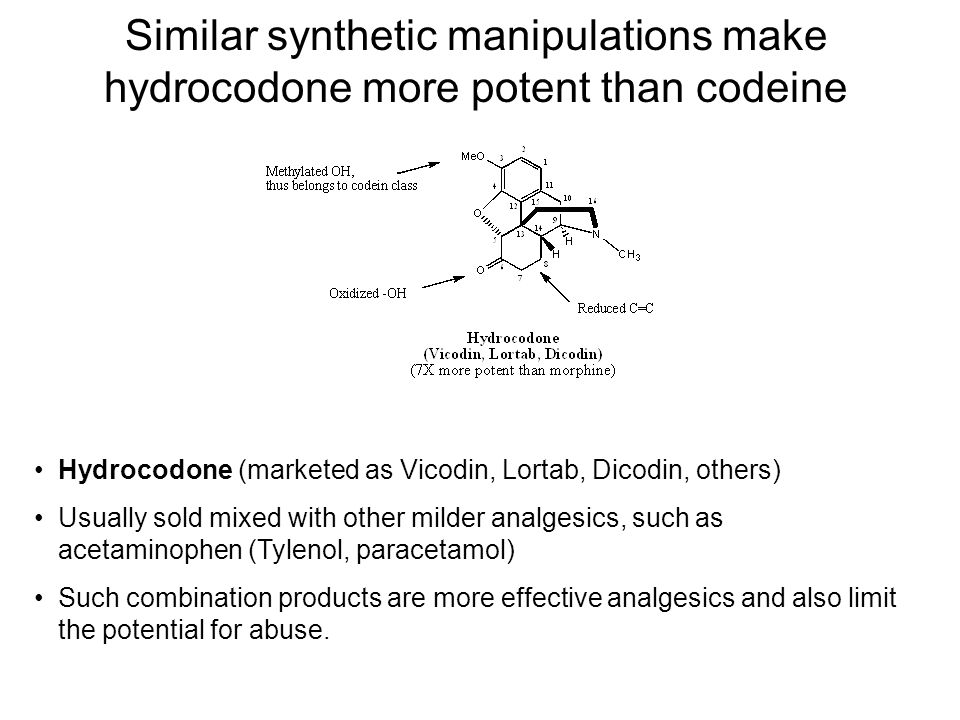 Similar synthetic manipulations make hydrocodone more potent than codeine