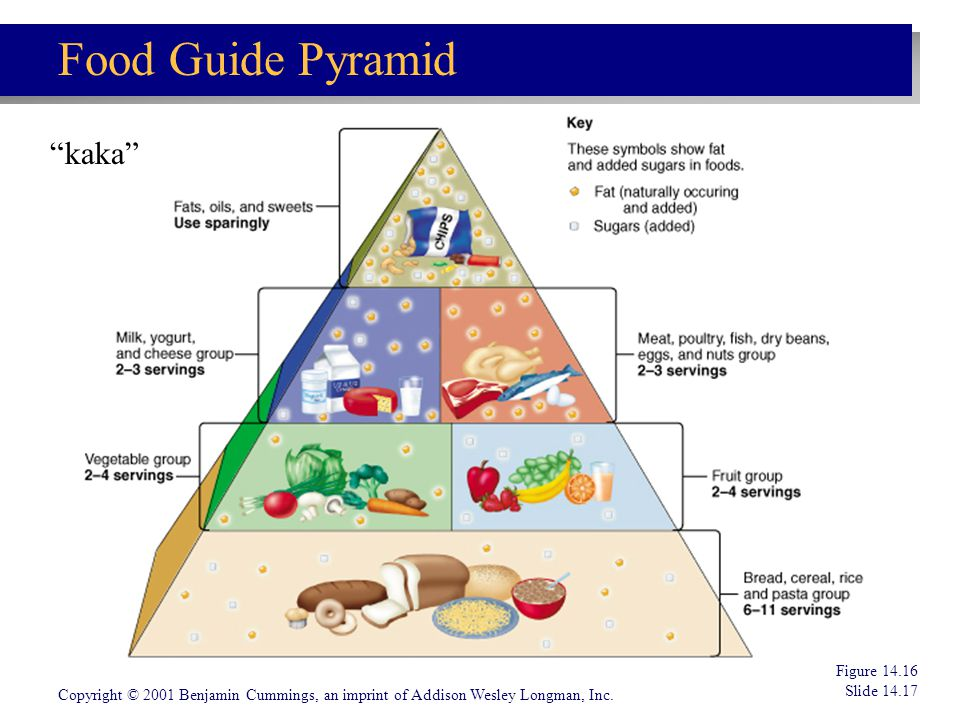 Food Guide Pyramid kaka Figure 14.16 Slide 14.17