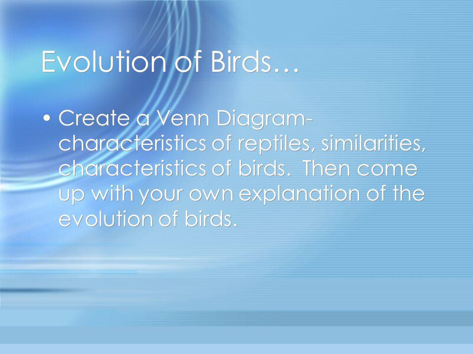 Evolution of Birds…