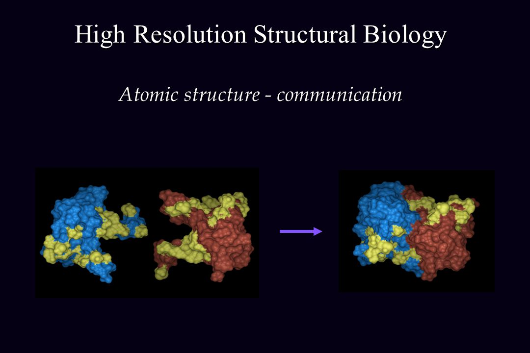 High Resolution Structural Biology