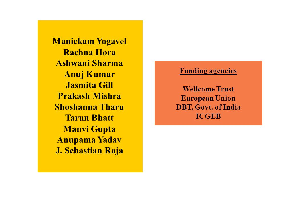 Manickam Yogavel Rachna Hora Ashwani Sharma Anuj Kumar Jasmita Gill