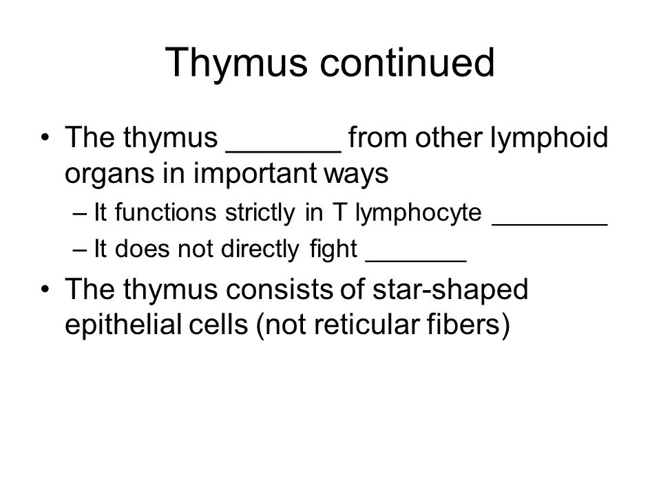 Thymus continued The thymus _______ from other lymphoid organs in important ways. It functions strictly in T lymphocyte ________.