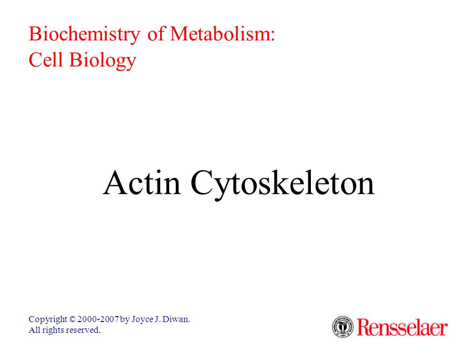 Actin Cytoskeleton Biochemistry of Metabolism: Cell Biology