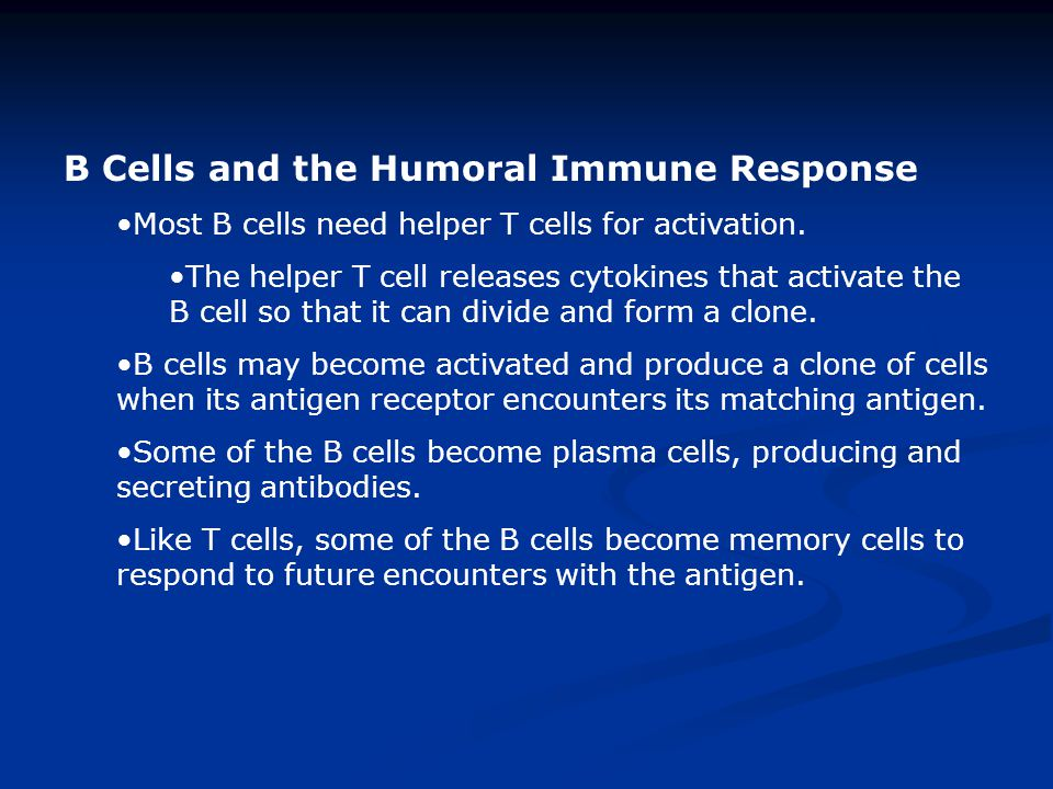 B Cells and the Humoral Immune Response