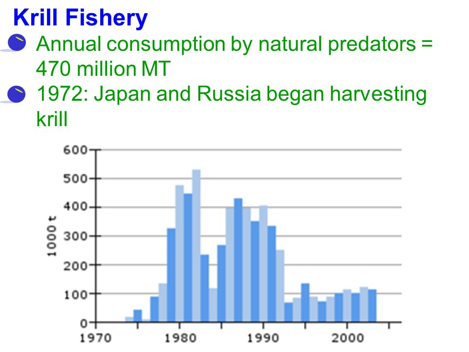 Krill Fishery Annual consumption by natural predators = 470 million MT