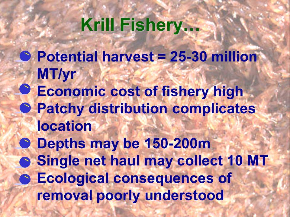 Krill Fishery… Potential harvest = 25-30 million MT/yr