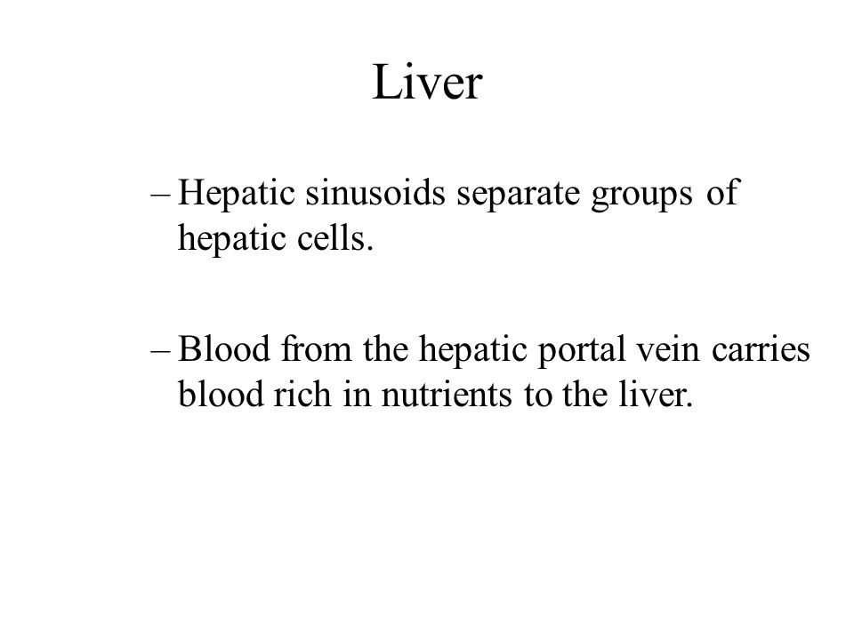 Liver Hepatic sinusoids separate groups of hepatic cells.