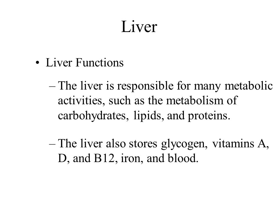 Liver Liver Functions. The liver is responsible for many metabolic activities, such as the metabolism of carbohydrates, lipids, and proteins.