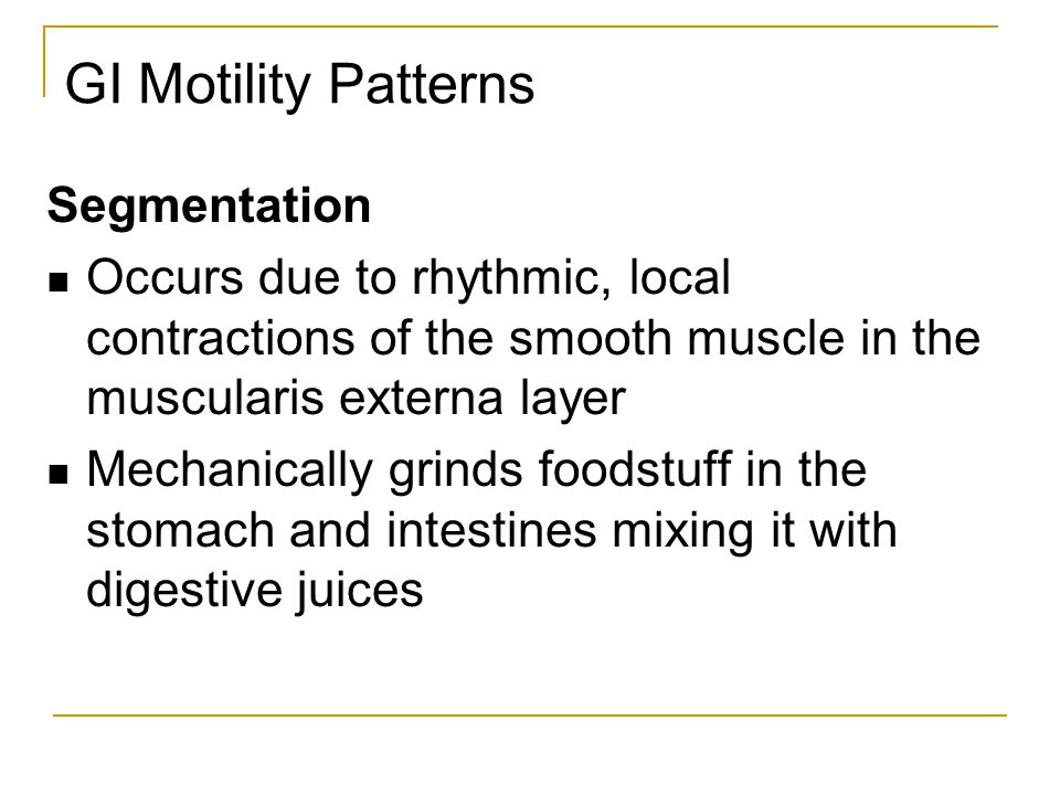 GI Motility Patterns Segmentation