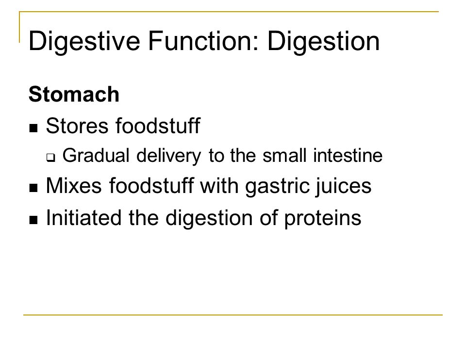 Digestive Function: Digestion