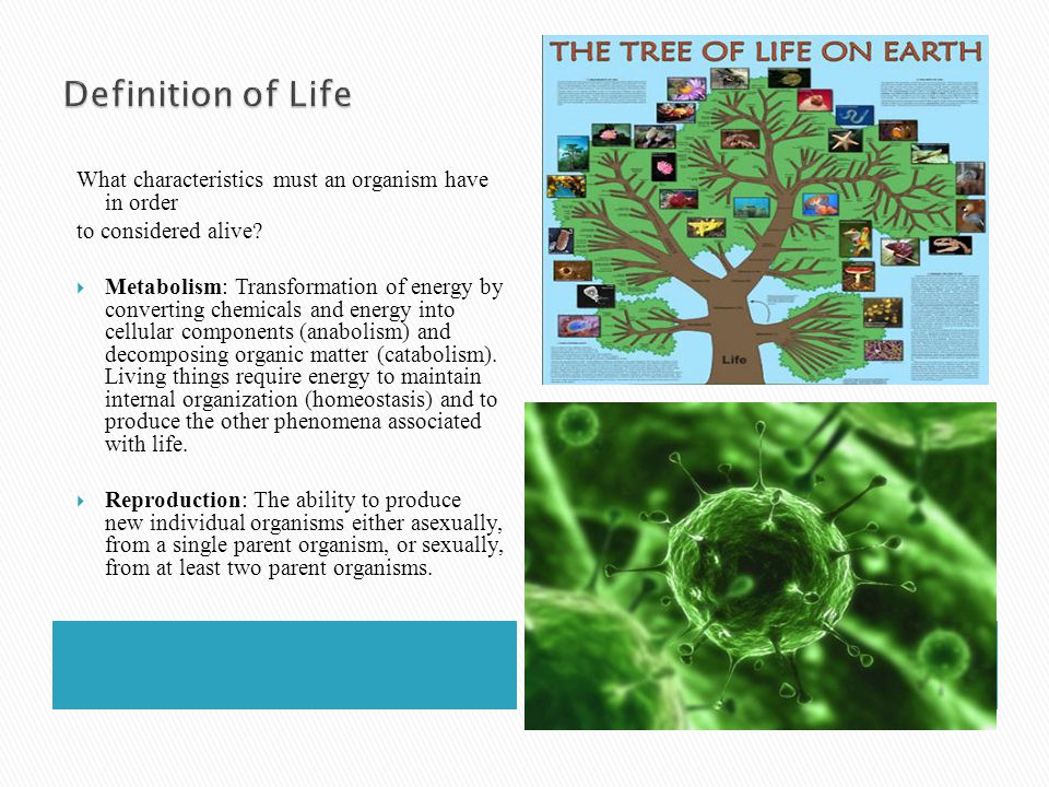 Definition of Life What characteristics must an organism have in order