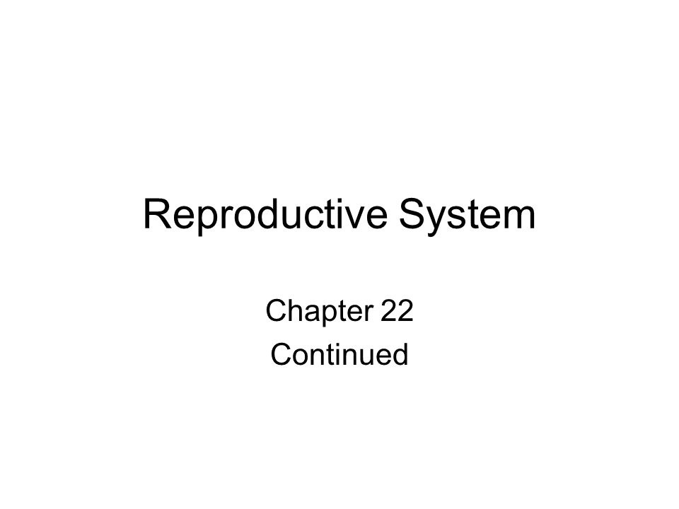 Reproductive System Chapter 22 Continued