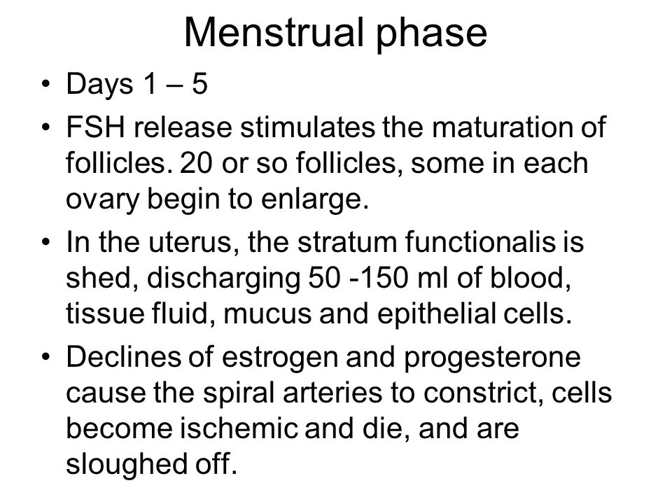 Menstrual phase Days 1 – 5. FSH release stimulates the maturation of follicles. 20 or so follicles, some in each ovary begin to enlarge.