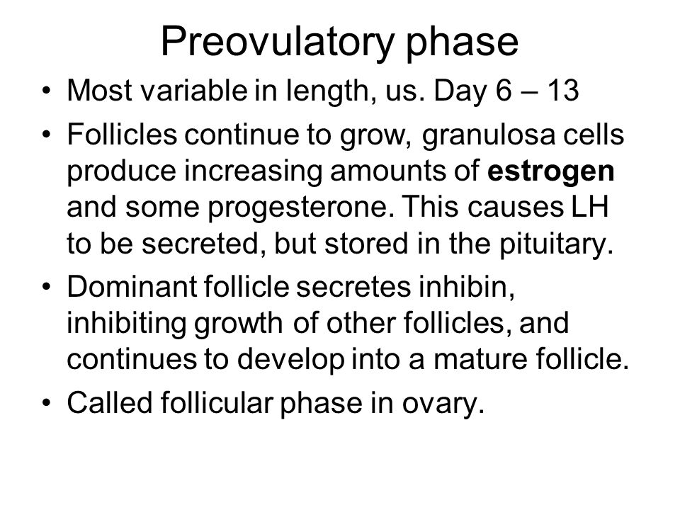 Preovulatory phase Most variable in length, us. Day 6 – 13