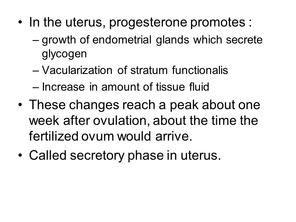 In the uterus, progesterone promotes :