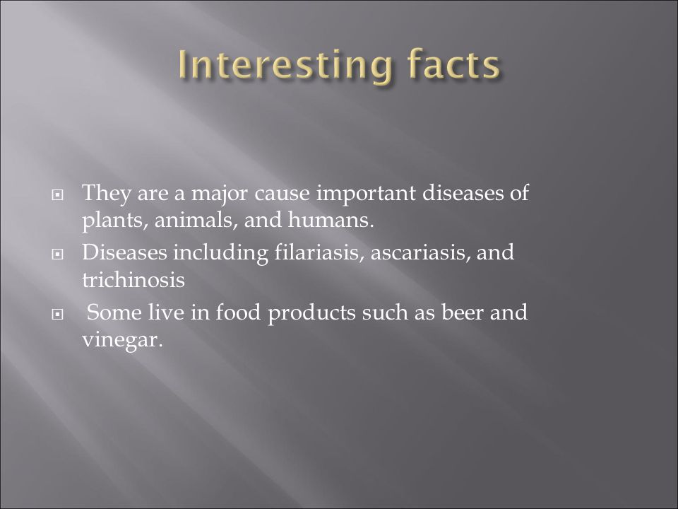 Interesting facts They are a major cause important diseases of plants, animals, and humans.