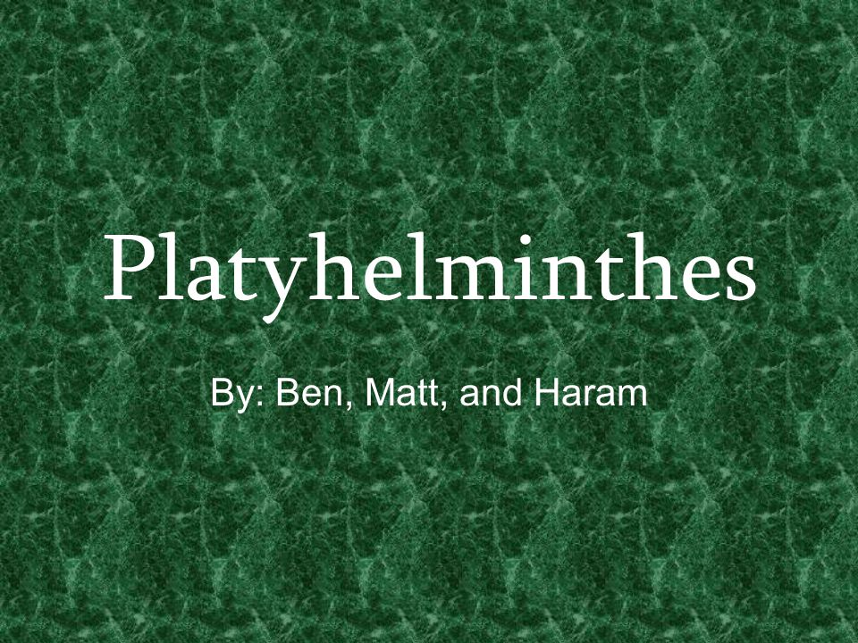 Platyhelminthes By: Ben, Matt, and Haram