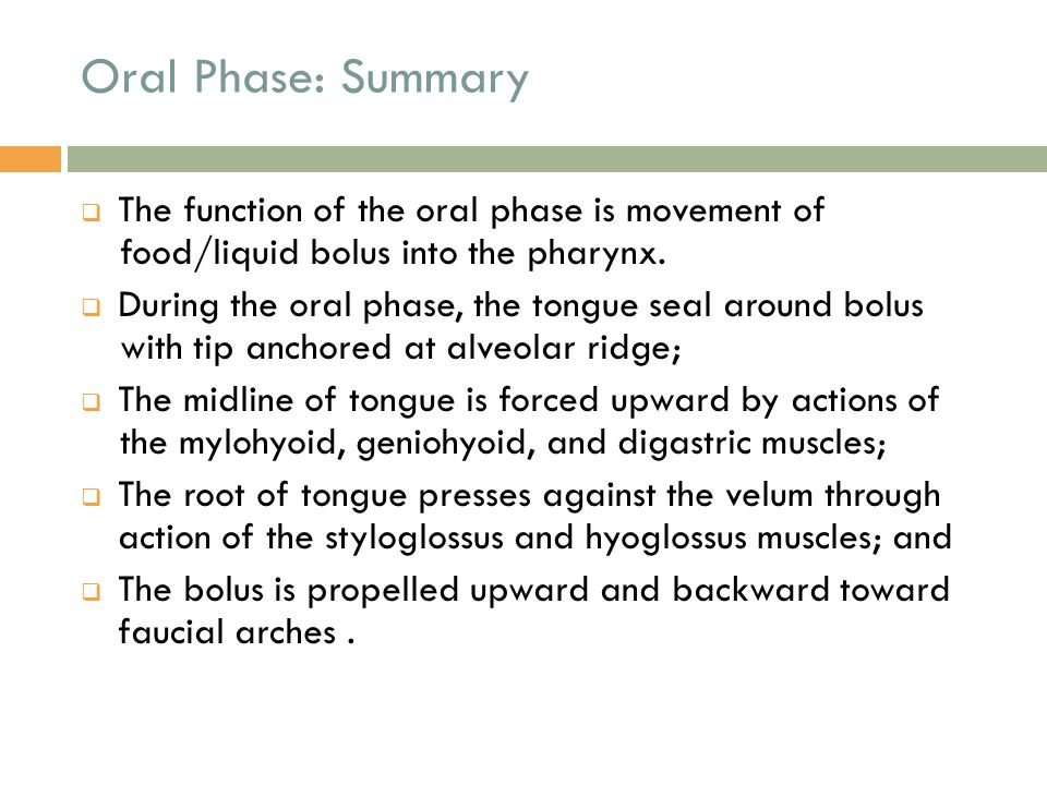 Oral Phase: Summary The function of the oral phase is movement of food/liquid bolus into the pharynx.