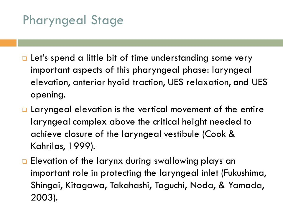 Pharyngeal Stage