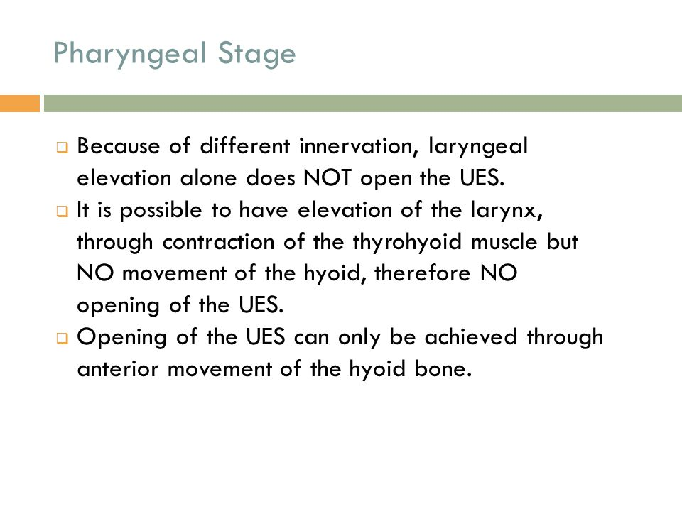 Pharyngeal Stage Because of different innervation, laryngeal elevation alone does NOT open the UES.