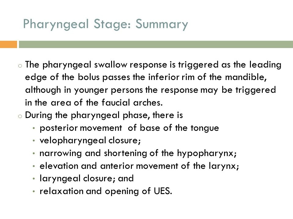Pharyngeal Stage: Summary