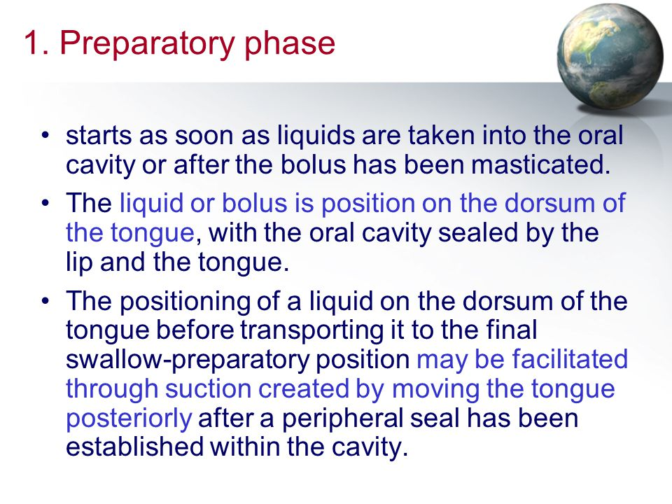 1. Preparatory phase starts as soon as liquids are taken into the oral cavity or after the bolus has been masticated.